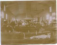 Students working with chemicals at lab benches ca. 1898
